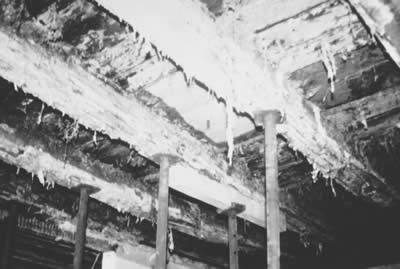 Ilustracion: Aparicion de moho en un techo de vigas de madera por inhibicion de difusion. Fuente: FUSSBODEN ATLAS®